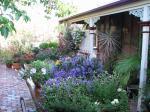 Courtyard Garden at the end of Spring