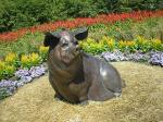 pig statue in childrens garden
